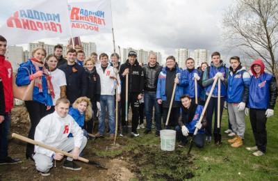 Депутаты очистили Москву от мусора