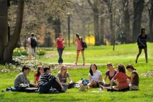 В общей сложности курсы по английскому языку пройдут в 14 столичных парках
