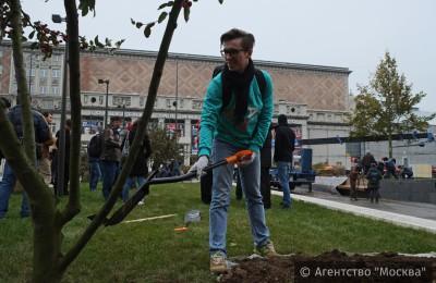 """Участники проекта """"Активный гражданин"""" приняли участие в высадке деревьев на Триумфальной площади"""