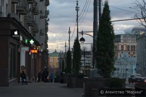 На портале «Активный гражданин» москвичи поддержали высаживание деревьев в кадках на улицах города