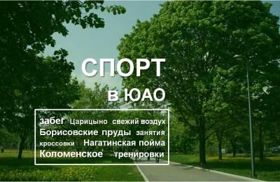 «Спорт в ЮАО»: Пробежаться по извилистым улочкам Риги или увидеть редчайшие вековые деревья смогут жители Южного округа