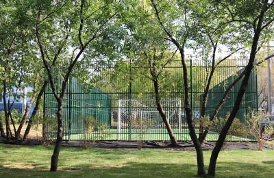 На фото один из дворов в Нагатинском Затоне
