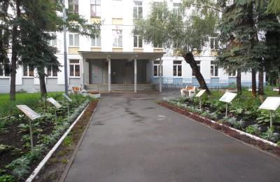 В школах и детских садах Москвы могут появиться «зеленые уголки»