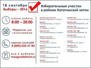 инфографика выборы_НЗ