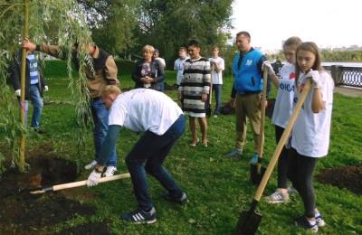 Студенты МФЮА высадили деревья в новом сквере
