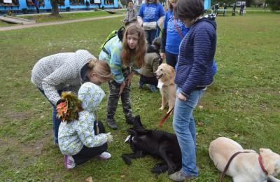 Очередная выставка собак прошла при поддержке «Симоновки»