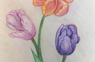Картина «Тюльпаны» Анастасии Трошиной