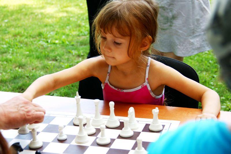 Шахматный турнир состоится в Нагатинском Затоне